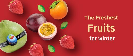 exclusive2 Promotion freshesst fruit cat|28-11|12|2018(en)